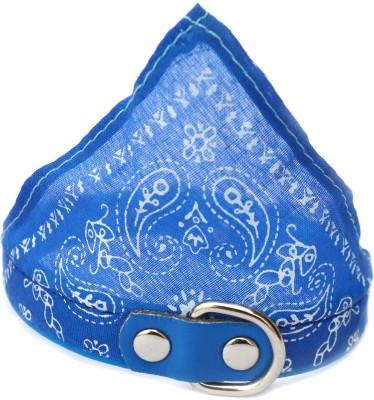 XPO Toy Breed Blue Bandana Dog Show Collar