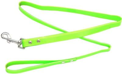 ecocart Dog Collar & Leash
