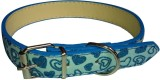 Pets Planet Dog Show Collar (Small, Blue...