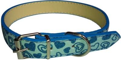 Petsplanet Dog Show Collar