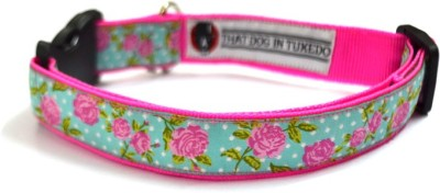That Dog In Tuxedo The Rosy Pink Dog Everyday Collar