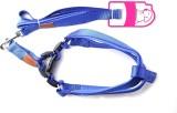 Ecocart Dog Harness & Leash (Medium, bri...