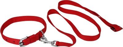 TommyChew Regular Dog Everyday Collar(Medium, Red)