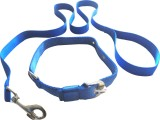 Suraj Chains Dog Collar & Leash (Medium,...