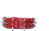 Scoobee Dog Everyday Collar(Large, scoobee red)