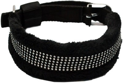 Pet Club51 Pet Club51 Dog Everyday Collar