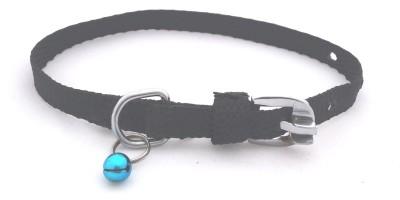 Scoobee Dog Everyday Collar(Small, Black)