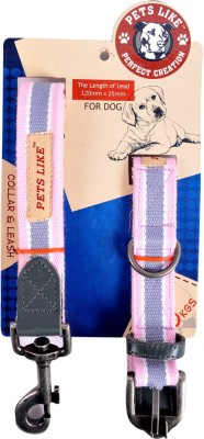 Petslike Dog Collar & Leash