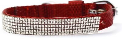 XPO Rhinestone Red Small Dog Show Collar