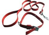 Suraj Chains Dog Collar & Leash (Small, ...