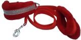 Pets Planet Dog Collar & Leash (Medium, ...