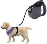 Futaba Dog Collar & Chain (Large, Black)