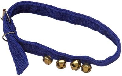 ecocart Dog & Cat Everyday Collar