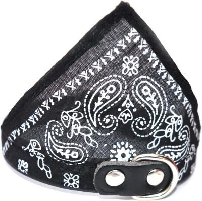 XPO Toy Breed Black Bandana Dog Everyday Collar