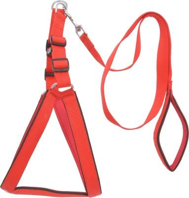 Wonder Wish Dog Harness & Leash
