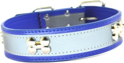 XPO Blue Bone Stud & Reflective Leather Dog Everyday Collar