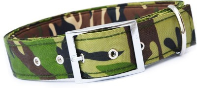 XPO Green Printed Dog Everyday Collar