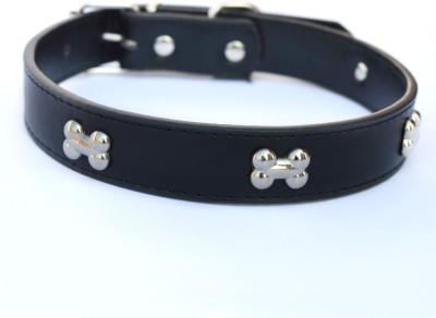 XPO Black Bone Medium Dog Everyday Collar