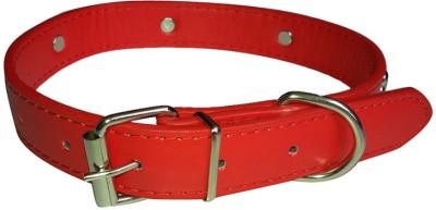 Pets Planet High Quality Bone Design Studs Dog Collar