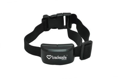 Tracksafe Dog Everyday Collar