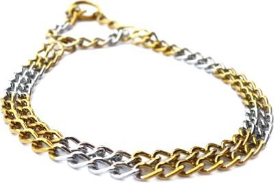 XPO Gold Silver Dog Choke Chain Collar