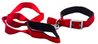 Pawzone Pawzone Dog Collar & Leash