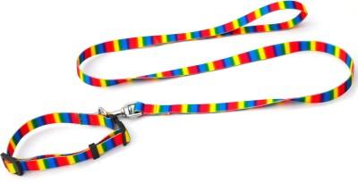 XPO Exotic Rainbow Design Dog Collar & Leash