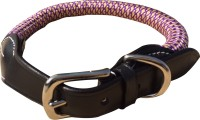 Nappets India Secure Dog Everyday Collar(35 - 50 cm, Purple, Yellow)
