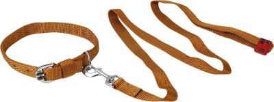 TommyChew Regular Dog Everyday Collar(Medium, Brown)