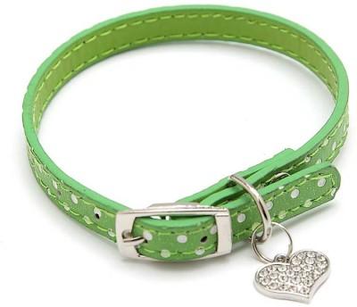 ecocart Dog Everyday Collar