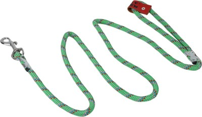 TommyChew SoftGrip Dog Everyday Collar(Small, Green)