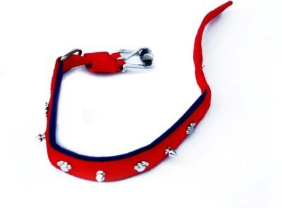Pets Empire Dog Everyday Collar