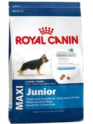 Royal Canin Maxi Junior Dog Food