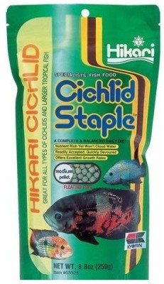 Hikari Cichlid Staple Medium Pellet 250g Fish Fish Food(250 g Pack of 1)