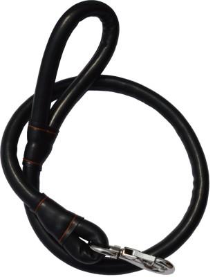 XPO 118.11 cm Dog Cord Leash