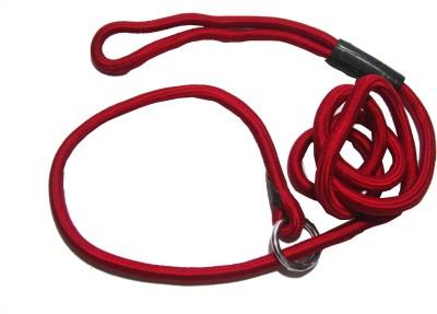 agnpetspot. 152 cm Dog Cord Leash