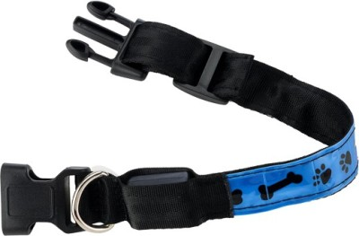 Four Paws Four Paws LED Dog Leash - Blue - (15-5) 9 cm Dog Strap Leash