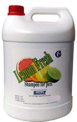 Medivet 5 L Pet Coat Cleanser