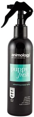 ANIMOLOGY All Purpose NOTHING Dog Shampoo