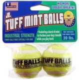 Petsport Tuff Mint Ball For Dog