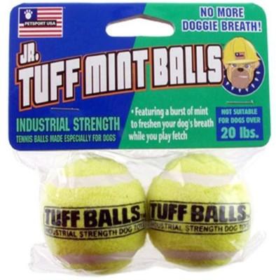 Petsport Tuff Mint Ball For Dog