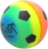 Ecocart Sponge Ball For Dog & Cat