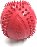 LOVE N CARE Rubber Ball For Dog