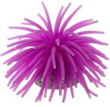 Creative Spinach Purple Sea Anemone Sili...