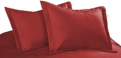 Cotton Loft Filled Size Pillow Protector