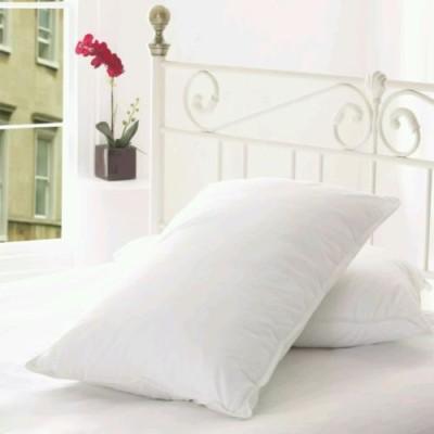 Carnival Plan Bed/Sleeping Pillow