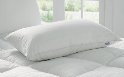 Story@home Plain Bed/Sleeping Pillow(Pack of 1, White)
