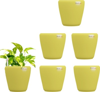 Yuccabe Italia Stoic Yellow Self Watering Plant Container Set