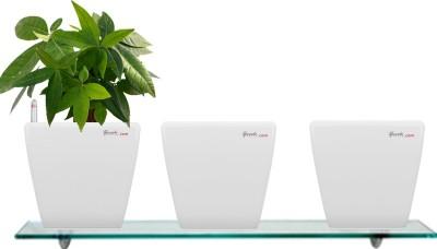 Yuccabe Italia Combo for 3 Stella White Self Watering planter Plant Container Set