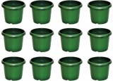 E-Plant Plant Container Set (Pack of 12,...